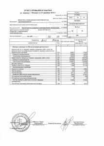Отчет о прибылях и убытках 2010